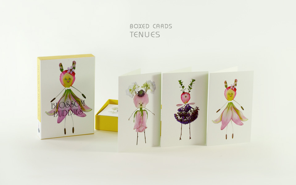 BOXED CARDS 2 Editorial Gallery