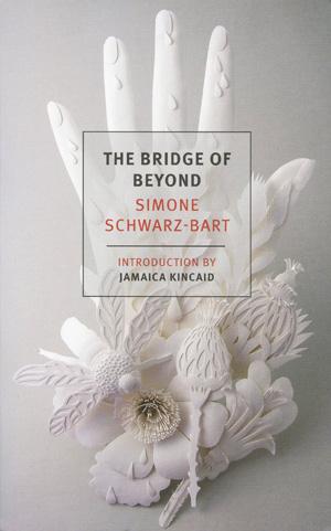 The Bridge of Beyond copy