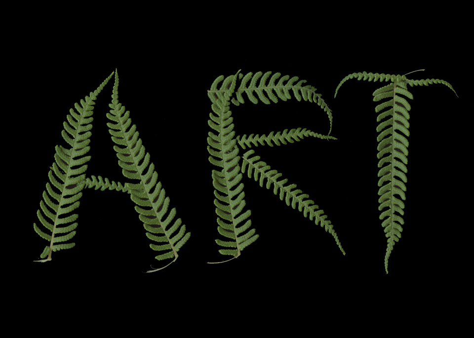 ART Fern THE ART IS A WAY PROJECT