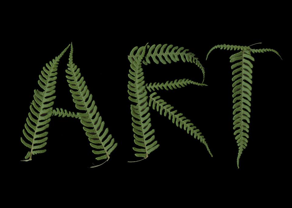 ART Fern THE ART IS A WAY PROJECT