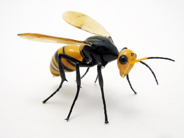 jap-hornet1