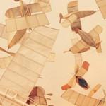 The Flying Ships of Luigi Prina.