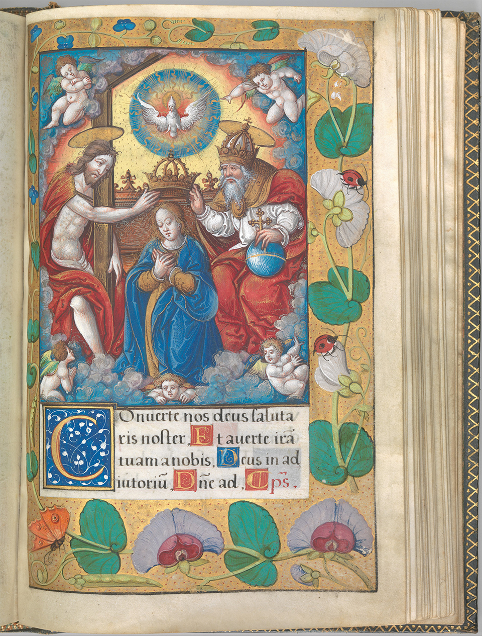 DP269767 Illuminated Book of Hours made for King Francis I.