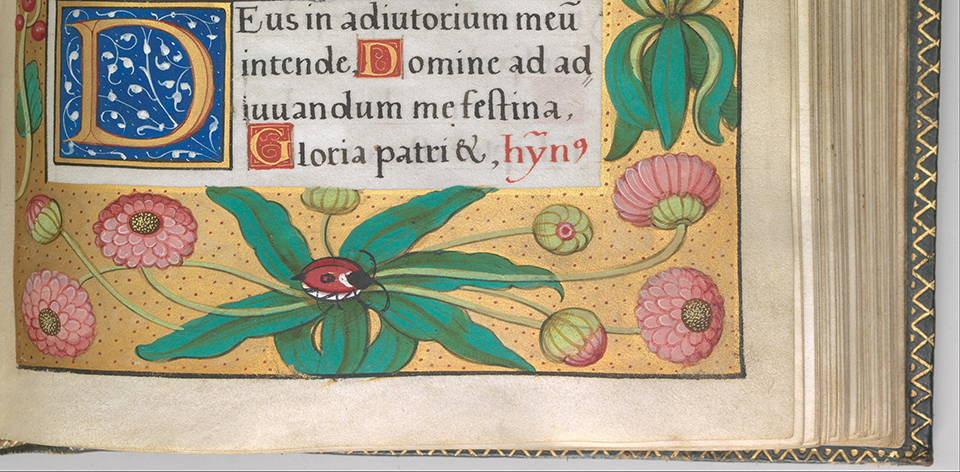 d2 Illuminated Book of Hours made for King Francis I.