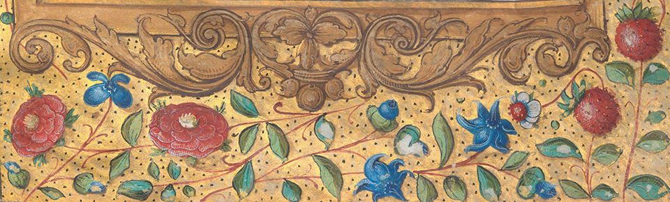 d4 Illuminated Book of Hours made for King Francis I.