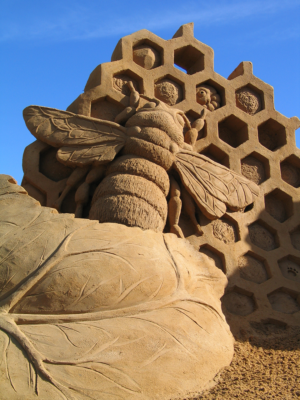 2970695099 00ed7217f4 o Amazing Sand Sculptures by Fergus Mulvany.