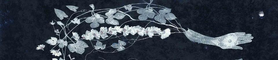 Valerie Hammond's Art.