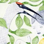 Illustrations by Sora Mizusawa.