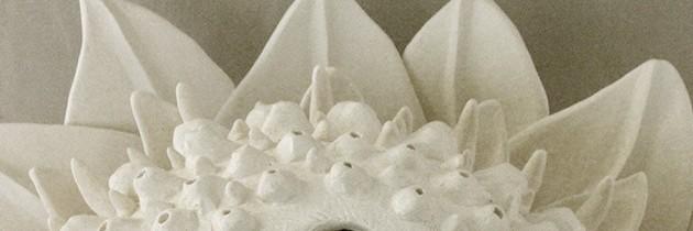 Elizabeth Shriver's Ceramics.