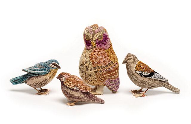 family birds_o